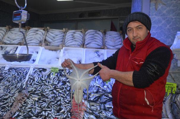 Balıkçı ağlarına takıldı İlgi odağı oldu