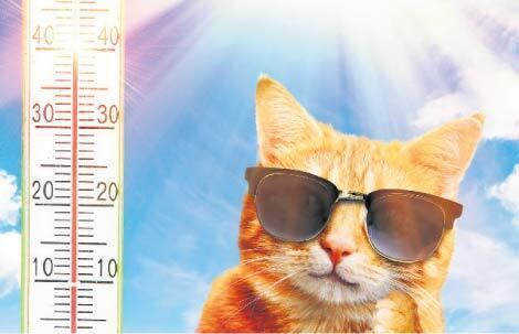 Sıcak hava ne yapar
