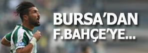 Fenerbahçe'den sürpriz hamle! Resmi teklif yapıldı...