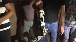 Suriye'den Ceylanpınar'a roket: Yaralılar var