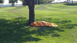 Belediye işçileri ceset buldu!