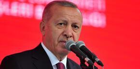 Erdoğan, Avrupa şampiyonu Akgül'ü kutladı