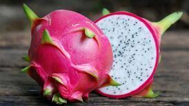 Ejder meyveli dondurmaya ilgi