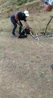 Yılanın boğmaya çalıştığı kartalı son anda kurtardılar