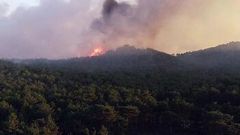 Son dakika | Eskişehir'de orman yangını! İşte son durum...