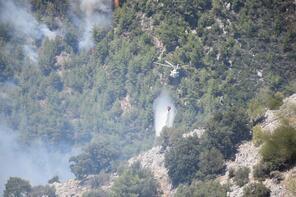 İzmir ve Muğla'da orman yangını!