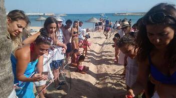 Didim'de yavru caretta carettalar denizle buluştu