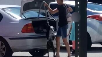 Barınağa alınmayan köpeğini, bagaja kilitledi