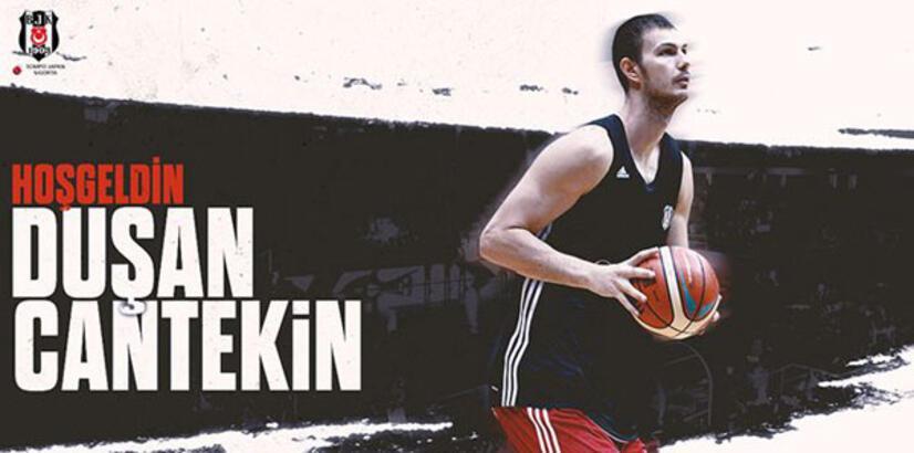 Duşan Cantekin, Beşiktaş Sompo Japan'da