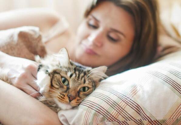 Adet öncesi sendromunun sebebi kediniz olabilir