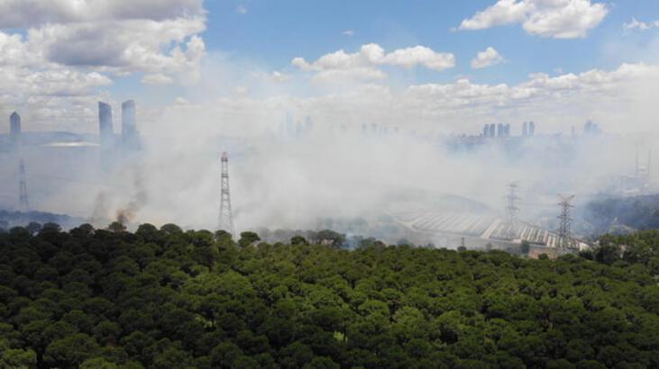 İstanbul'da orman yangını kontrol altına alındı