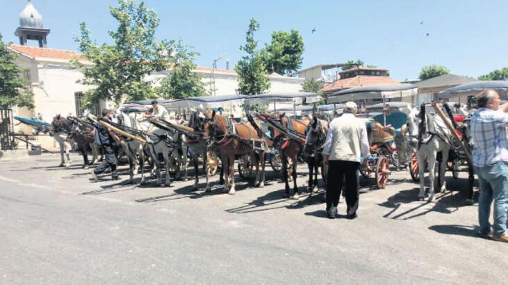 Atların 30 derecede ölüm kalım savaşı!
