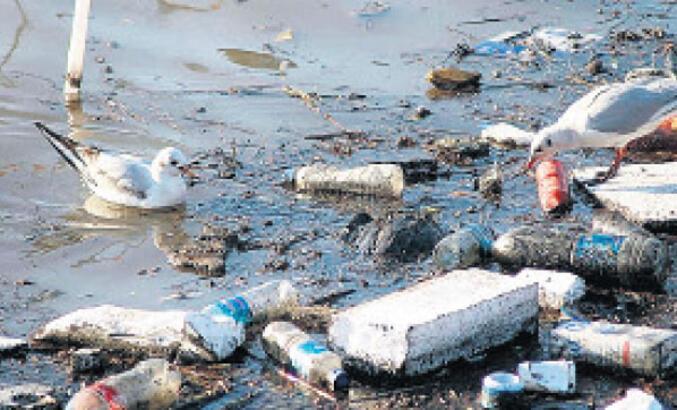 Tek kullanım plastik yasaklanmalı!