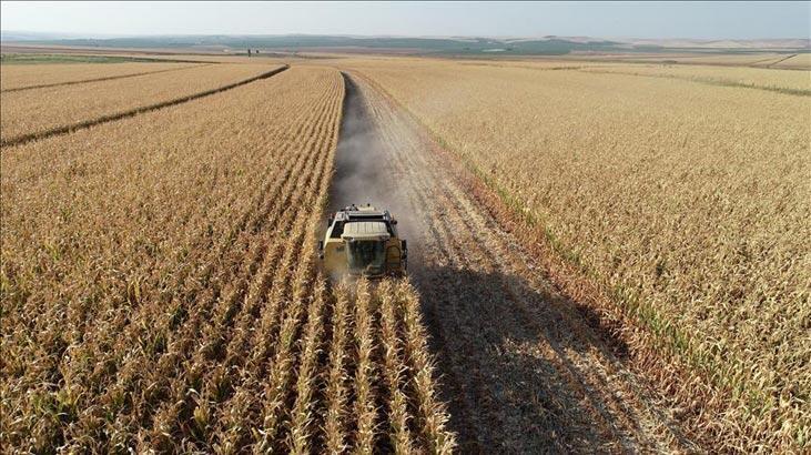 Tarım ÜFE haziran verileri