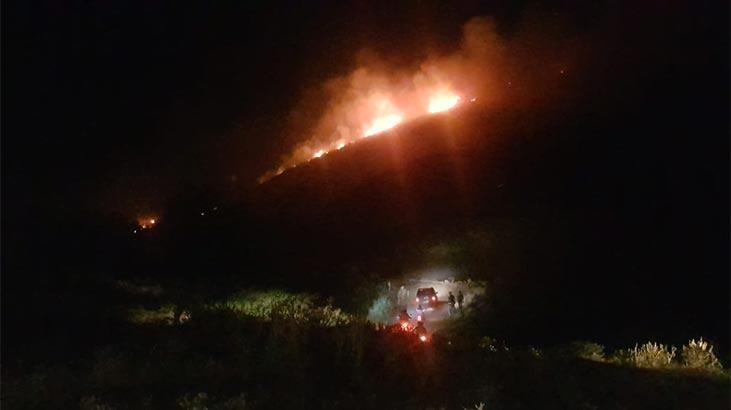Aydın'da korkutan yangın! Kontrol altına alındı