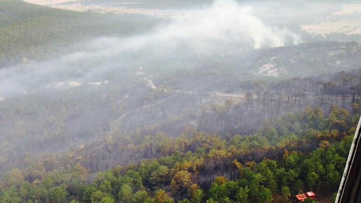 Eskişehir'deki yangın kontrol altına alındı