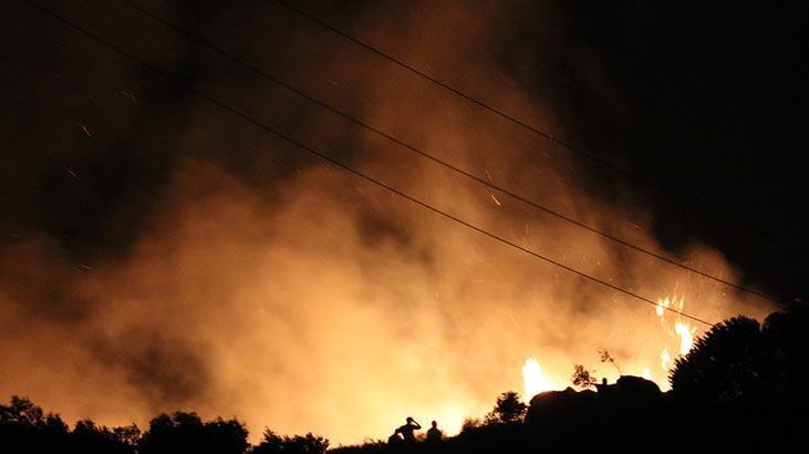 Marmara Adası'ndaki yangınla ilgili flaş gelişme: Tutuklandılar