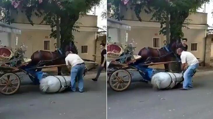Hayvanlara yazık değil mi! Yorgunluğa dayanamayan at bayıldı