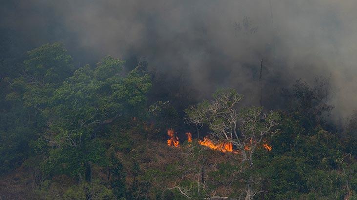 Amazon yangınları için Brezilya'dan flaş karar