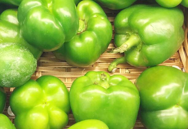Hepimizin gözü gıda alışverişi yaparken en parlak en düzgün sebze ve meyvelere takılıyor. Peki, bu durum ne kadar doğru? Oldukça güzel görünen bu düzgün, aynı zamanda muntazam ürünler sağlığınızı tehdit ediyor olabilir.Dolmalık biber