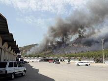 SON DAKİKA! Son 24 saatte üçüncü orman yangını