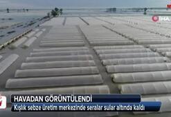 Kışlık sebze üretim merkezinde seralar sular altında kaldı