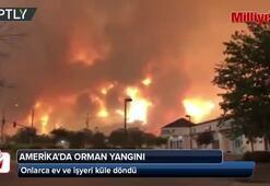 ABDnin batı eyaleti Californiada yangın