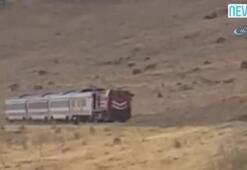 Çoban ve koyun sürüsü trenin altında kalmaktan saniyelerle kurtuldu