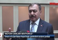 Bakan Eroğlu: Bütün canları seviyoruz