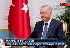 Erdoğan-Aliyev görüşmesi