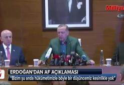 """Cumhurbaşkanı Erdoğan'dan """"af"""" açıklaması"""