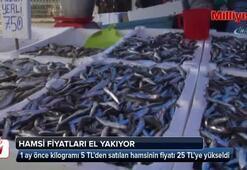 Hamsi az olunca balıkçı tezgahları boş kaldı