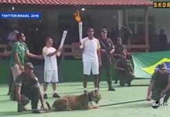 Askerlere saldıran jaguar vuruldu