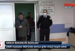 Sağlık Bakanlığı domuz gribi vakası sayısını açıkladı