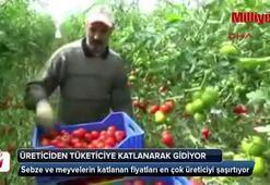 Sebzelerin fiyatları üreticiyi şaşırtıyor