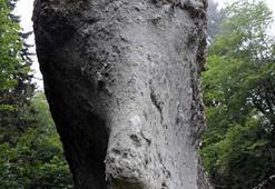 Köylüler birkaç yıl önce buldu Ormandaki Titanik şaşkına çeviriyor...
