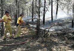 ODTÜ ormanında yangın
