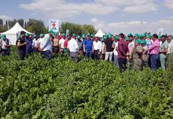 Kayseri Şeker'den pancar çiftçisine 11 buçuk milyon TL avans