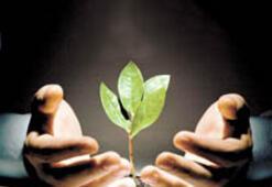 'Yeşil' şirketler, çalışanlarını ne kadar bilinçlendiriyor