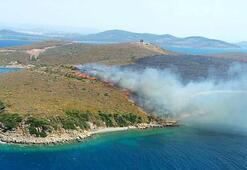 Ayvalık Maden adasında orman yangını