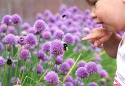 Çocuklarda sinek ve böcek ısırıklarına karşı ilk yardım önerileri
