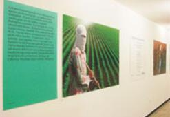 Yaşar Kemal sergisi Frankfurt'ta açılıyor