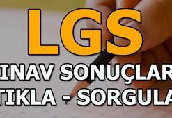 LGS sınav sonuçları LGS tercih kılavuzu yayınlandı (E-Okul LGS sorgulama)