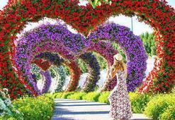 Dubai Mucize Bahçesi turistlerin gözdesi