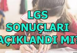 LGS sonuçları açıklandı LGS sonuç sorgulama   E okul giriş