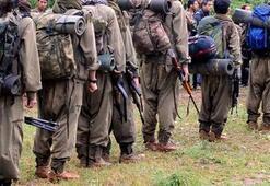 PKK Kandil'den panikle kaçıyor