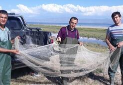 Vanda ele geçirildi Kaçak olarak avlanmış tam 500 kilogram...