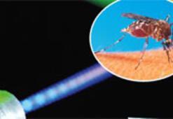 Lazer sivrisineklere karşı..