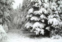 Yarın kar bekleniyor
