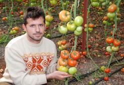 ODTÜ'den mezun oldu, çiftçiliği seçti